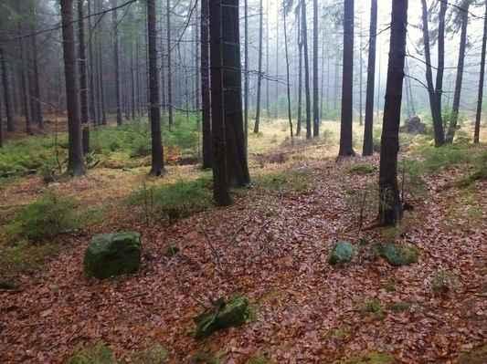 pod bouřným, který byl v minulosti znám jako friedrichsberg - bedřichovický vrch, stávala podle pověsti víska friedrichsdorf...
