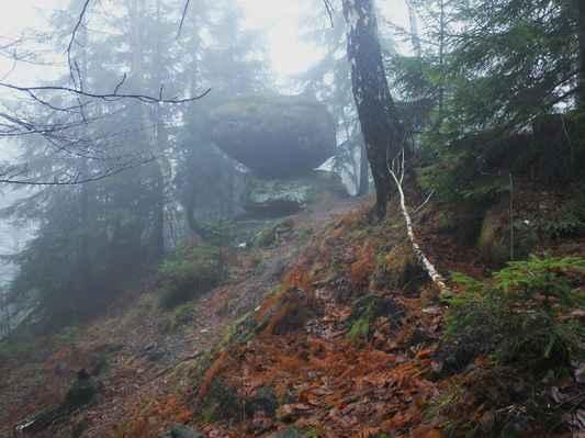 u cesty se v prudkém svahu ukrývá jediný viklan lužických hor...